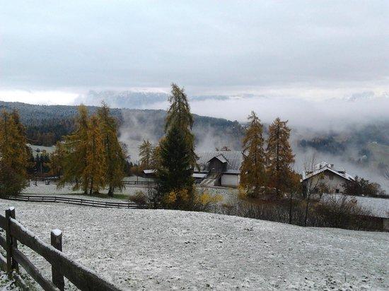 Berggasthof Ploerr: paesaggio innevato visto dall'albergo