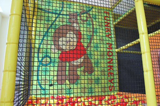 Funky Monkeys Play Center - Lower Parel: Junior Zone Ball Pool