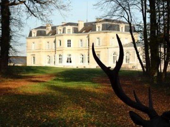 Le Chateau des Moyeux: Château Moyeux