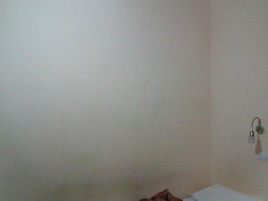 A Casa di Penelope: paredes asquerosas