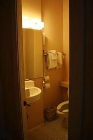 Arlington Resort Hotel & Spa: bathroom - there is a shower to the right as you walk in...