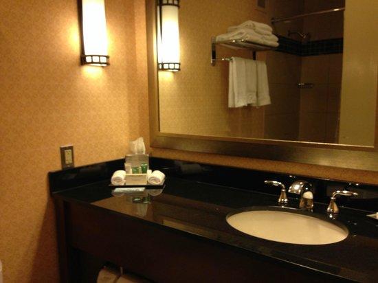Hilton Chicago O'Hare Airport: Bathroom sink area
