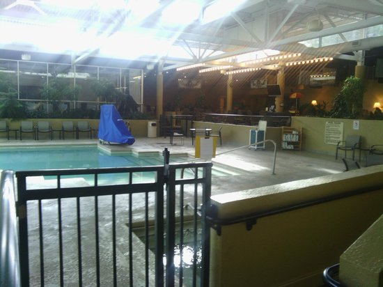 Holiday Inn Knoxville West- Cedar Bluff Rd: Tropical pool and hot tub area