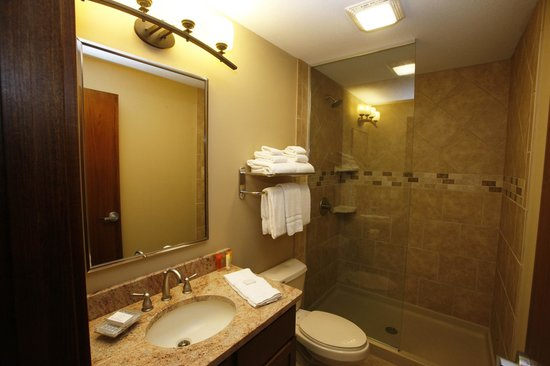 Lake AuSable Lodge at Forest Dunes Golf Club: Standard room bathroom.