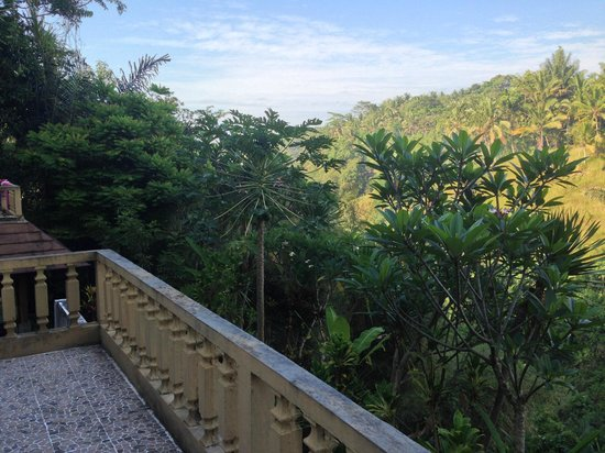 Graha Moding Villas: view from our balcony