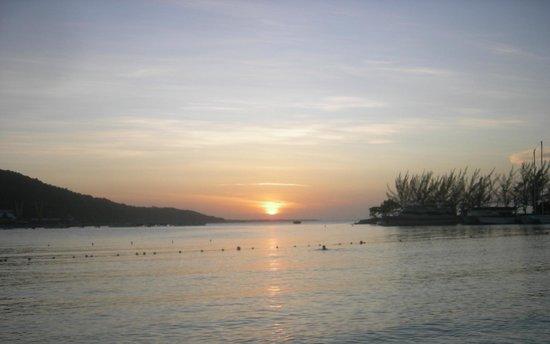 The Amazon Lodge B&B : Tropical sunset