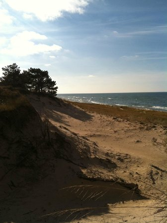 Saugatuck Dunes State Park: Another view of Lake Michigan standing on the Dunes