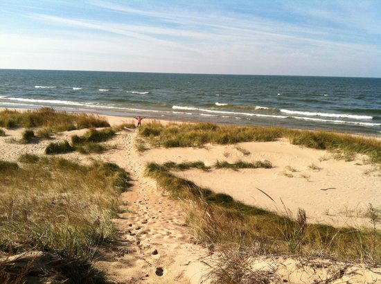 Saugatuck Dunes State Park: view one of Lake Michigan from the Dunes