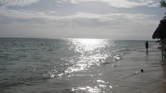 Catalonia Bavaro Beach, Casino & Golf Resort: Beach