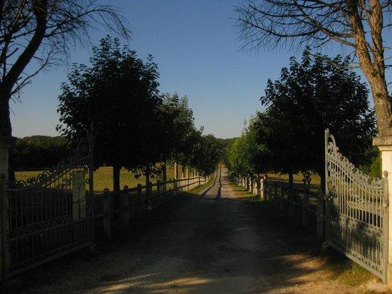 Domaine du Chatelard : Driveway