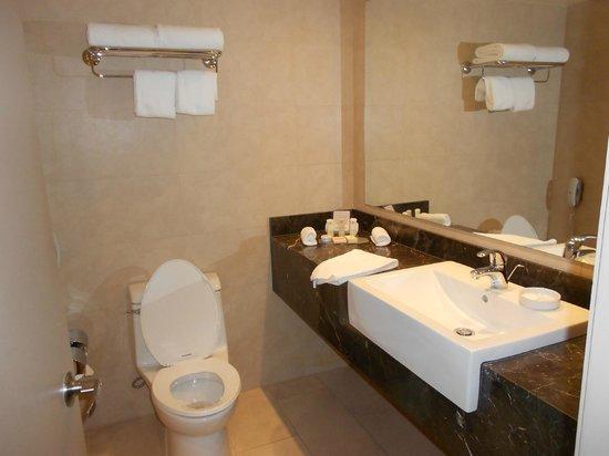 Crowne Plaza Hotel Santiago : Baño completísimo