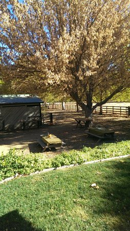 Thacher Winery: Classic Western Setting