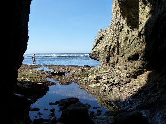 Nosara B&B Retreat: Cave on Pelada Beach