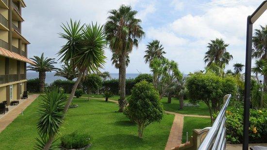 Four Views Oasis: Garten