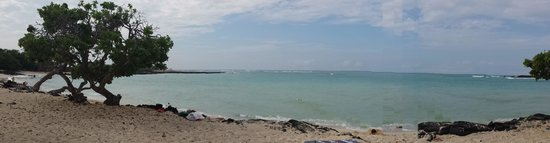 Kona Seaside Hotel: Beach