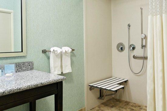 Hampton Inn & Suites - Orlando-North/Altamonte Springs: Accessible Bathroom - Roll-in Shower