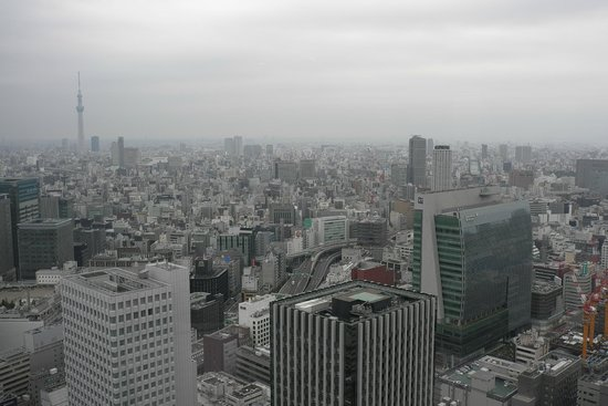 Shangri-La Hotel, Tokyo: View from the room