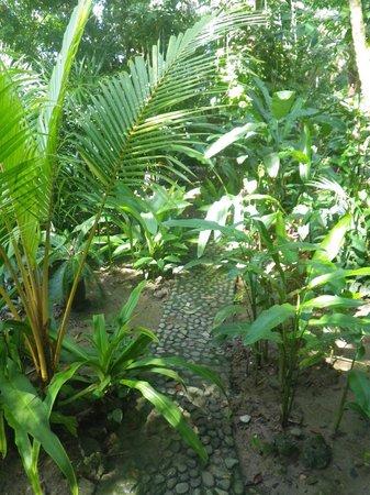 cabinas punta uva: Jardin.
