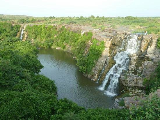 Nagarjuna Sagar, Ινδία: ethipothala fallx
