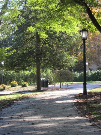 University of North Carolina: Walkway thru campus