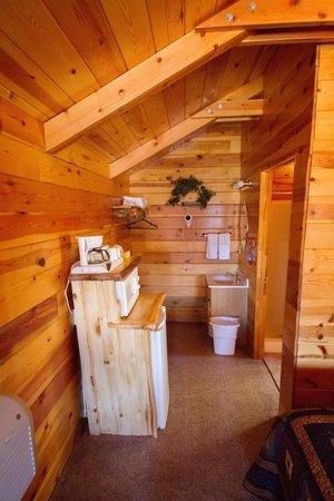 Bryce Canyon Country Cabins : Kühlschrank und Waschbecken-Ecke