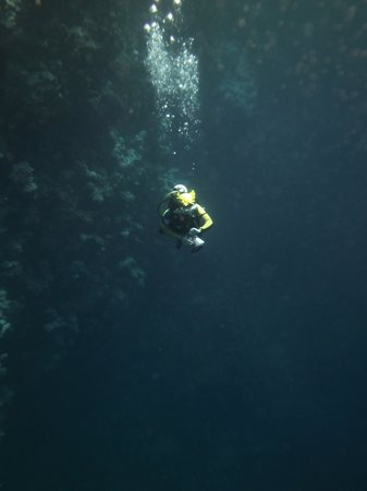 Sinai Divers Dahab : How bright is that wet suit!