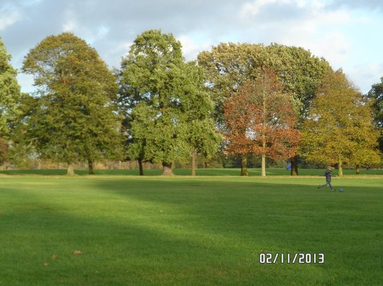 Wollaton Hall and Park: autumn