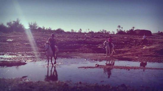 Riad Tahili & Spa : Activité cheval