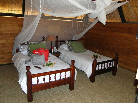 Miombo Safari Camp: Inside the tree house