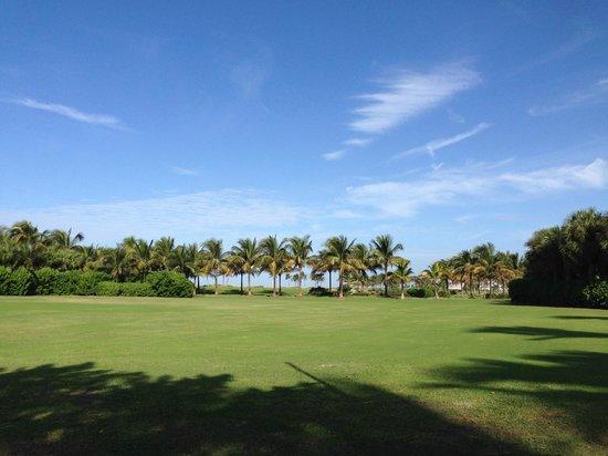 South Seas Island Resort: Hotel Grounds
