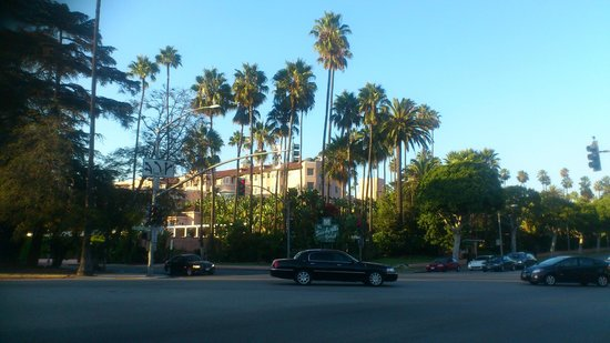 The Beverly Hills Hotel : the pink panther