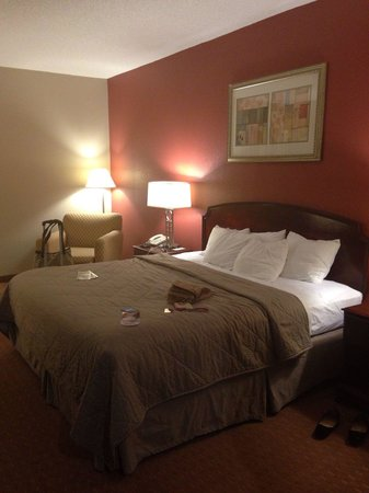 Comfort Inn: Huge room & bed!