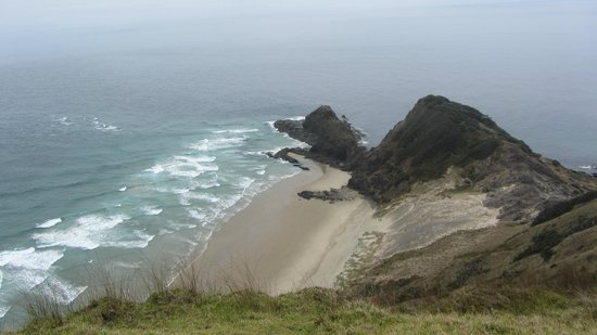 GreatSights New Zealand Day Tours: View from Cape Reinga