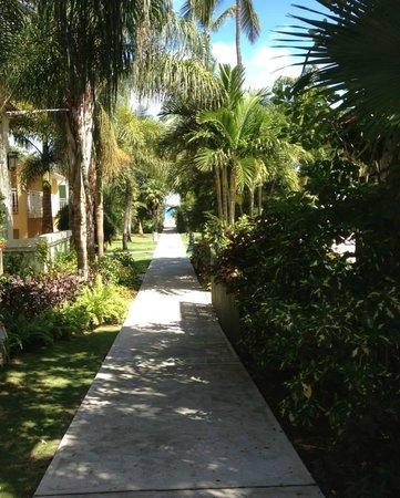 Sandals Grande Antigua Resort & Spa: Beautiful view
