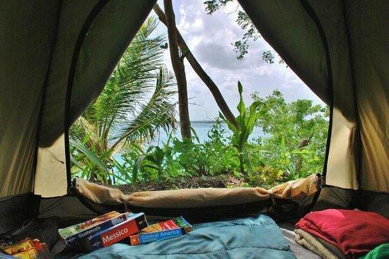 Tribu Camping: vista desde la tienda