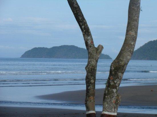 Jaco Laguna Resort & Beach Club : Beautiful views