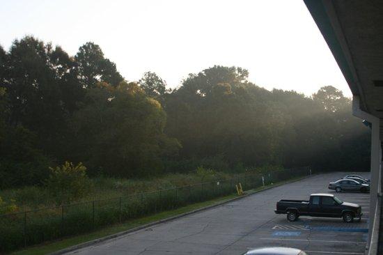 Motel 6 Lafayette : Morning sun!