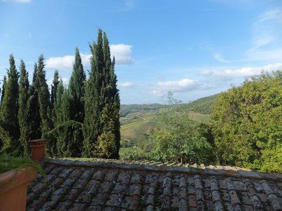 Fattoria Poggerino: view from our room