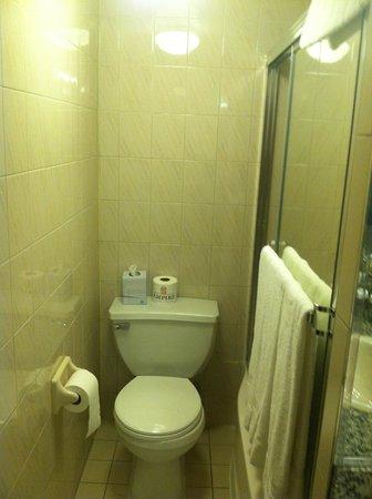Travel Inn Hotel New York: Bath Room 438
