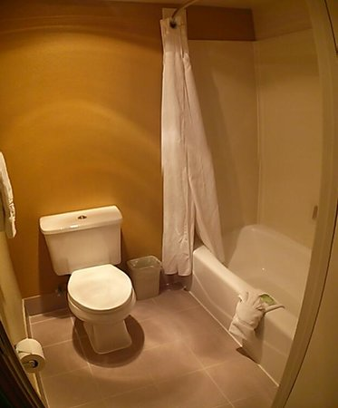 Holiday Inn Express San Jose Central City: Loo