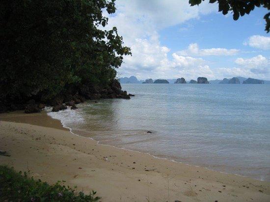 Koyao Island Resort : Beach