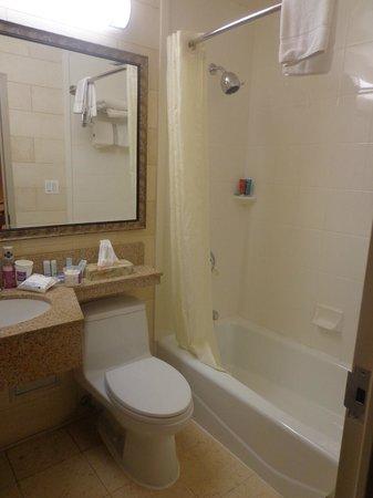 Sleep Inn - Long Island City: Bathroom