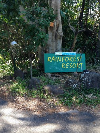 Byron Bay Rainforest Resort: Entrance from the road