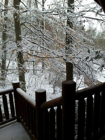 Donna's Premier Lodging: first snowfall of the season!