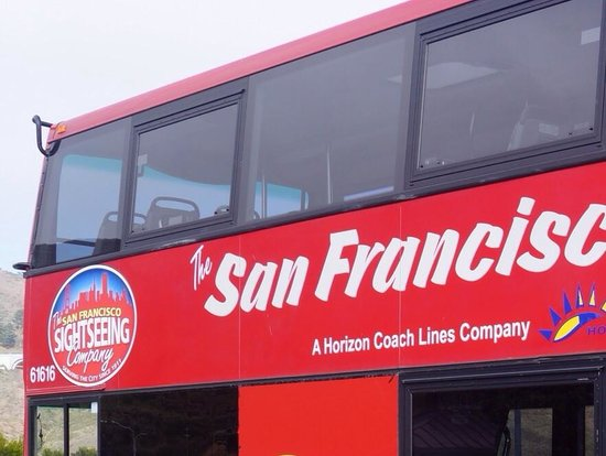 The San Francisco Sightseeing Company: The bus (duh!)