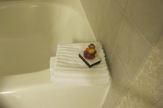 Jefferson Clinton Hotel : Rubber Ducky in the Bathroom!