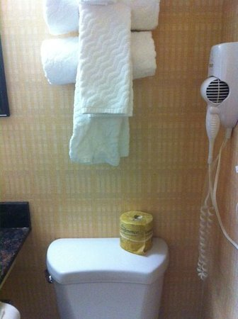 Aashram Hotel by Niagara River: Not a fan of the towels over the toilet