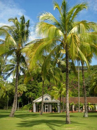 Queen emma 39 s house picture of national tropical - National tropical botanical garden ...