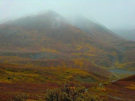 Wilderness Access Center: 雨のデナリ