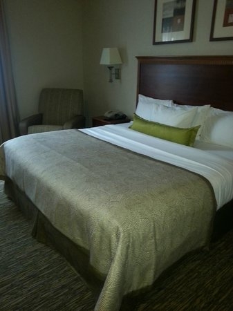 Candlewood Suites Virginia Beach / Norfolk: Very comfortable suite